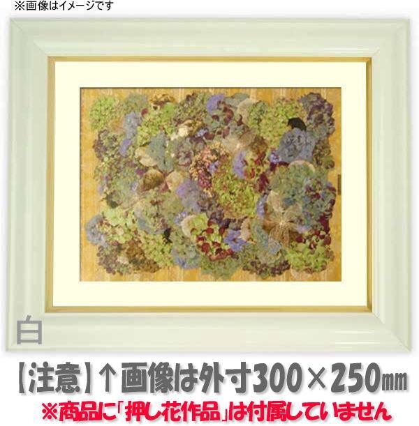 押し花額縁 工芸型/白 大衣サイズ(ガラス506×391mm)【os-B】