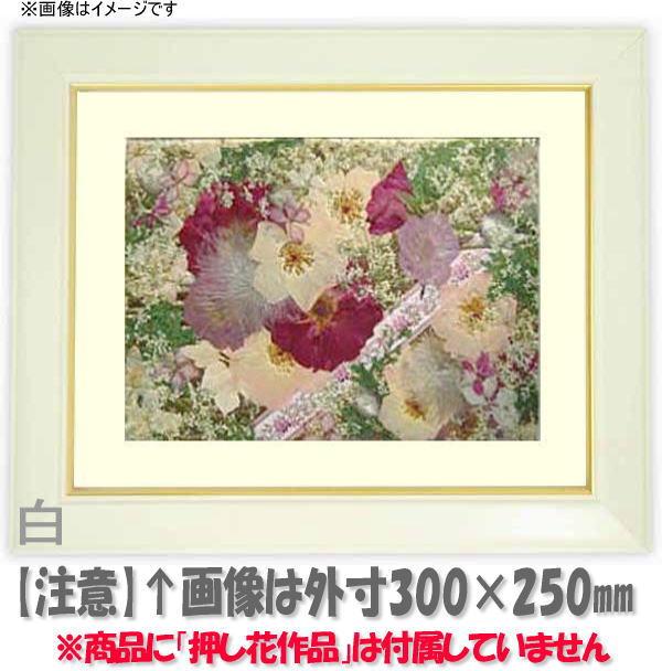 押し花額縁 No.3/白 L60額サイズ(ガラス寸法600×300mm)【os-C】