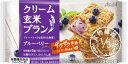 【処分:賞味期限(2017/08/31)】アサヒグループ食品 バランスアップ クリーム玄米ブラン ブルーベリー 48個入