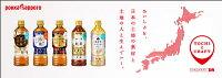 ポッカサッポロ加賀棒ほうじ茶525mlペットボトル48本(24本入×2まとめ買い)〔お茶緑茶国産焙じ茶ほうじ茶〕