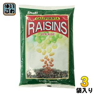 正栄食品 サンライズレーズン 1kg 3袋 (1袋入×3 まとめ買い)〔スイーツ・菓子 ドライフルーツ〕