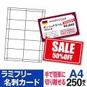 【送料無料】 ラミフリー 名刺カード 10面 A4 250シート レーザープリンター専用 名刺用紙 名刺 プライスカード POP …