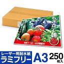 【送料無料】 耐水紙 ラミフリー A3 250枚 レーザープリンター専用 プライスカード POP メニュー ラミネート パウチ …