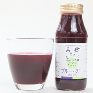 果樹ある生活 ブルーベリー(果汁50%) 180ml×20本 なかひら農場TEL:0265363206            ブルーベリージュース ブルーベリー 製造直販 なかひら農場 果樹ある生活 送料無料