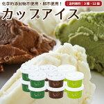 中洞牧場アイスミルクギフト【12個セット】