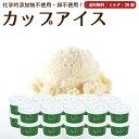 プレゼント ギフト アイスクリーム 20個 ミルク 送料無料 卵不使用 無添加 詰め合わせ スイーツ グラスフェッド 有機 お取り寄せ 送料込み [冷凍] gift