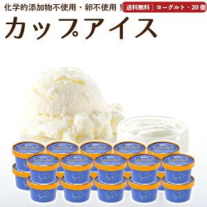 アイスクリーム 20個 ヨーグルト 送料無料 卵不使用 無添加 詰め合わせ スイーツ ギフト グラスフェッド 有機 お取り寄せ 送料込み [冷凍] gift  2003ss