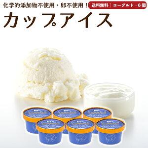 アイスクリーム 6個 ヨーグルト 送料無料 卵不使用 無添加 詰め合わせ スイーツ ギフト グラスフェッド 有機 お取り寄せ 送料込み [冷凍] gift  2003ss