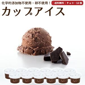 プレゼント ギフト アイスクリーム 12個 チョコレート 送料無料 卵不使用 無添加 詰め合わせ スイーツ グラスフェッド 有機 お取り寄せ 送料込み [冷凍] gift