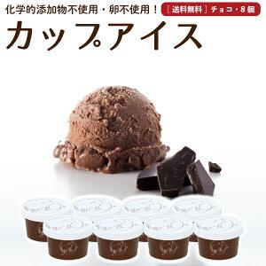 プレゼント ギフト アイスクリーム 8個 チョコレート 送料無料 卵不使用 無添加 詰め合わせ スイーツ グラスフェッド 有機 お取り寄せ 送料込み [冷凍] gift