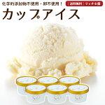 クリームリッチアイスクリーム6個セット