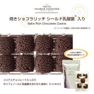 IIWAKE COOKIES いいわけクッキー 焼きショコラリッチ 乳酸菌入り 45枚入り(ピロ個包装)