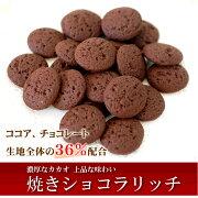 焼きショコラリッチ50個