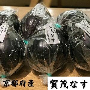 京野菜 京都府産 賀茂なす 6玉入 (400g〜500g/玉)