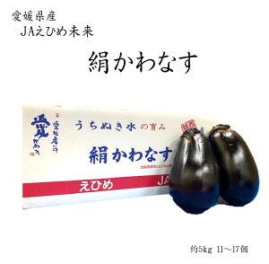【期間限定】愛媛県産 JAえひめ未来 絹かわなす 約5kg 11〜17個 きぬかわなす ぼてナス ジャンボ 茄子 なす