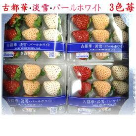 奈良県産 古都華・淡雪・パールホワイト 3色苺 1パック100g 9玉入×4パック(1箱400g)