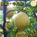 愛媛県中島産 無農薬レモン5kg 皮まで美味しい ノーワックス・防腐剤不使用 サイズ不揃い・訳あり