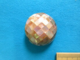 貝ボタン(30mm) 薄ピンクベージュ系