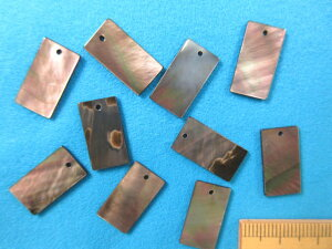 シェルパーツ 長方形(18mm×10mm)ベージュ