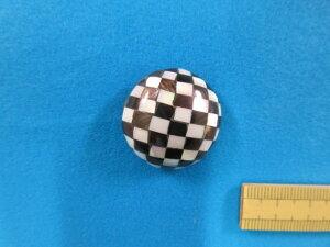 貝ボタン(28mm) オフ白×黒