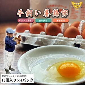 南総フォレスト卵 平飼い 養鶏卵 (10個入りx4パック) 【赤卵 卵 たまご 生卵 平飼い 卵 おいしい卵 こだわり卵 おいしい 美味しい セット お得 お徳用 ギフト プレゼント 贈り物 お中元 御中元