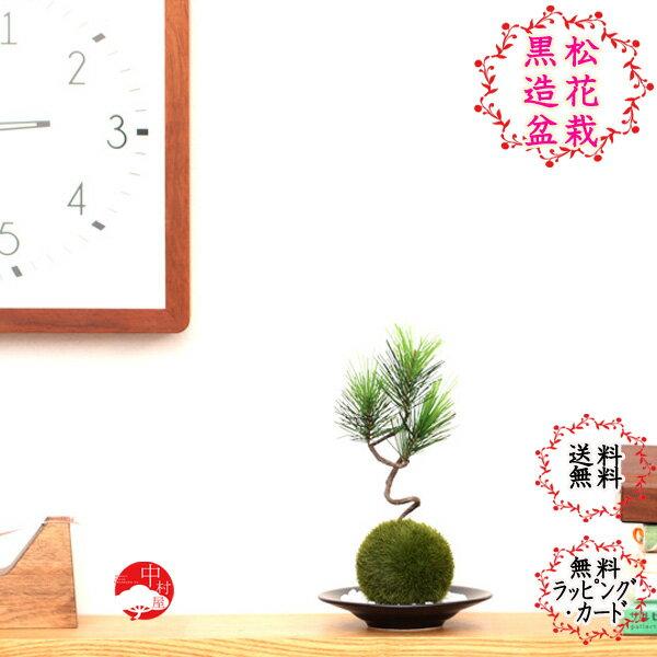 【造花】黒松苔玉セット(小) 受け皿と敷き砂付のクロマツこけ玉 ギフトプレゼントにも