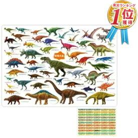【恐竜先生になれるかも?】恐竜好きな恐竜の下敷き ( 約H210×W297mm ) A4サイズ 恐竜大全 ダイナソー 恐竜博 ジュラシックワールド 小学生 子供 男 グッズ 誕生日 誕生日プレゼント 1000円ポッキリ 買い回り ポイント消化 お中元 2021 メール便送料無料