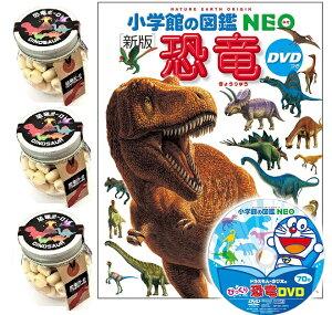 【当店でしか買えません】恐竜ボーロ 50g たまごボーロ(卵ボーロ)3個 & DVD付 新版 恐竜 (小学館の図鑑 NEO) (2種 4点セット) 本 赤ちゃん ベビー 子供 男 男子 恐竜 レックス ダイナソー おみ