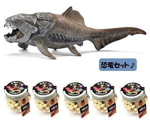 【単品購入よりも200円引きで送料も無料】当店でしか買えません シュライヒ (Schleich) 恐竜 ダンクルオステウス フィギュア 14575 & 恐竜ボーロ 50g 5個 (2種・6点セット)たまごボーロ(卵ボー