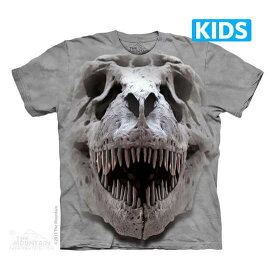 The Mountain Tシャツ T-Rex Big Skull (恐竜 ティラノサウルス キッズ 子供用)【輸入品】半袖