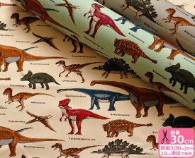 【コットンツイル】Dinosaurs ダイナソーズ(本物みたいだ!恐竜プリント・ツイルダイナソー)綿100%・110cm巾 【生地・布】KTS-6036