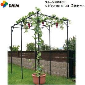 【お得な2個セット】DAIM くだもの棚セット KT-M 120cm×180cm/フルーツ栽培キット