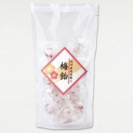 梅飴 105g〔中田食品 紀州産南高梅入り 甘さ控えめ 〕