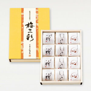 中田食品 紀州南高完熟梅 梅三彩(うめさんさい) 12粒 梅干し 贈答 ギフト 減塩