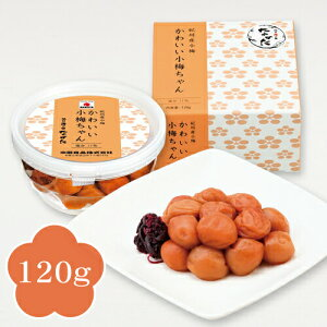 中田食品 紀州産小梅 かわいい小梅ちゃん 梅干し 120g 減塩 塩分11%