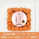 【送料無料】数量限定 中田食品 紀州産南高梅 しらら Sサイズ 300g 塩分5%