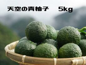 天空の青柚子5kg
