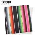 Beech010 01