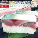 [マラソンP2倍][冷蔵]極厚 刺身同然 福井の生さば寿司【通常サイズ】届いたその日が旬の味わい[生鯖寿司お取り寄せの萩]プレゼントに!