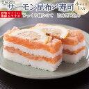 [冷蔵]極上 サーモン昆布締め寿司を福井から【小サイズ】届いたその日が旬の味わい [生鯖寿司お取り寄せの萩]プレゼントに!