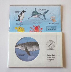 スタディーホリック STUDY HOLIC レターセット (海洋生物学) ST-135 オフホワイト 白色 便箋 封筒 セット 本 MARINE BIOLOGY ペンギン クラゲ ウミガメ サメ タコ アザラシ クジラ ハコフグ 日本 グ