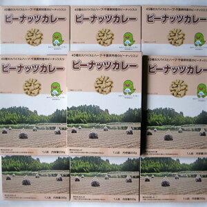 ピーナッツカレー10個セット 送料無料 レトルトカレーのご当地カレーをお取り寄せ