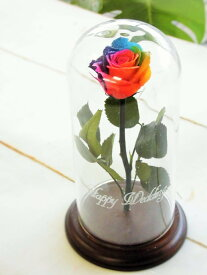 """【名入れギフト】【送料無料】プリザーブドフラワーレインボーローズ ''Rainbow Dome"""" ガラスドーム メッセージ入 誕生日 母の日 父の日 退職 記念日 ブライダル 結婚式 贈呈品 レインボーローズ レインボーローズ名入れ ガラスドームフラワーレインボー"""