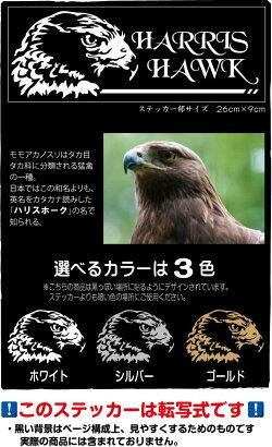 ハリスホーク(モモアカノスリ)ステッカー26cm×9cm色は3色から猛禽類ファンに!