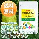 【送料無料】植物生まれの発酵グルコサミン&コンドロイチンヒアルロン酸やMSMとも相性good【s】【k1】【m2】