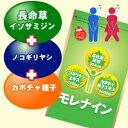 【送料無料】ノコギリヤシ+カボチャ種子+長命草サプリ『モレナイン』毎日のトイレが気になる方