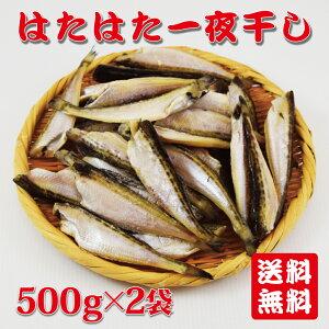 【送料無料】ハタハタ一夜干し1kg(500g2袋) 無頭ハタハタ 干しハタ 日本海産 干物 父の日 敬老の日 ギフト