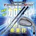 【即納】 スイング練習器具 ティーチングプロ2 トレーニングロッド