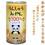 ナンカイみかんジュース100%190g/30缶
