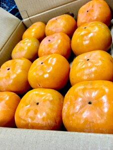 次郎柿1等品 (30-45個入) 愛知産 約10kg 贈答 最安値 産地直送 厳選